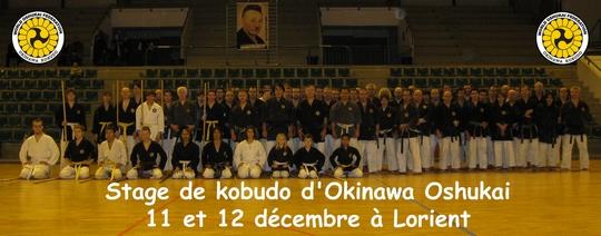 Stage de Kobudo à LORIENT 11 et 12 décembre 2010