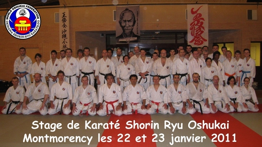 Stage de Karate Oshukai à Montmorency
