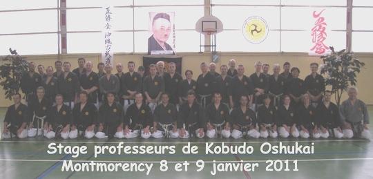 stage OSHUKAI professeurs de kobudo 08-09/01/11