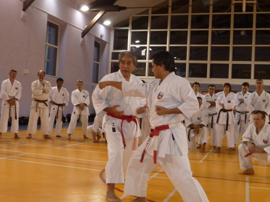 Marseille – Stage professeurs de karate Shorin Ryu Oshukai