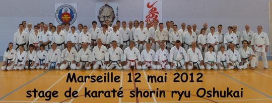 Stage de Karate Oshukai Shoryn ryu à Marseille