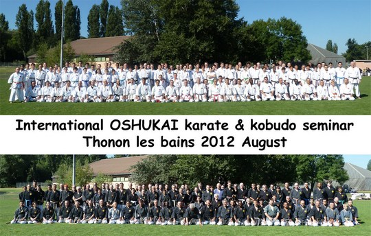 Stage Internationnal de Thonon 2012