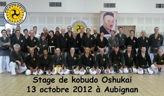 Stage Oshukai de Kobudo d'Okinawa à Aubignan