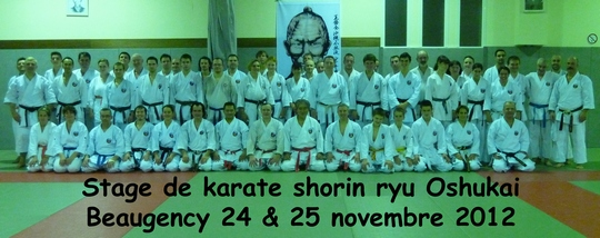 Stage Oshukai Shorin Ryu de Beaugency