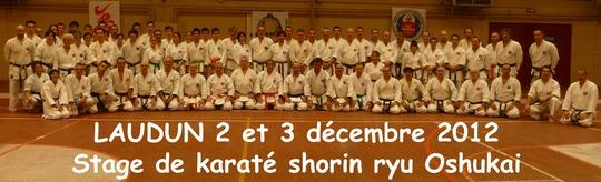 Groupe Laudun decembre 2012