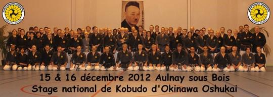 stage Oshukai de Kobudo à Aulnay