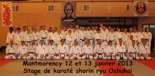 stage Oshukai Shorin Ryu à Montmorency janvier 2013