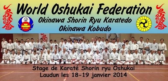 Stage de Karate Oshukai à Laudun