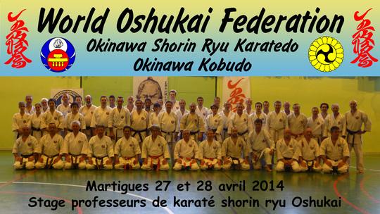 Stage professeurs de Karate Oshukai à Martigues