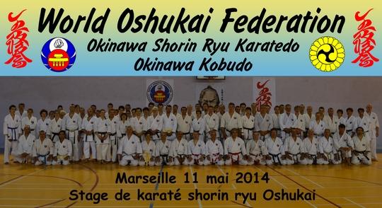 Stage Oshukai de Karate Shorin Ryu à Marseille