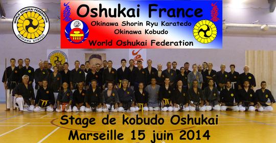 Stage de Kobudo Oshukai à Marseille