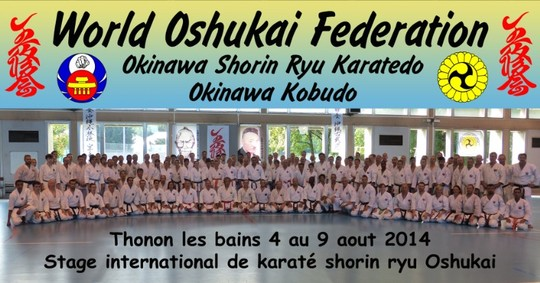 Karate Thonon 2014