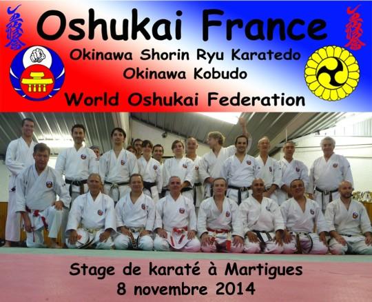 Stage de Karate Oshukai de Martigues