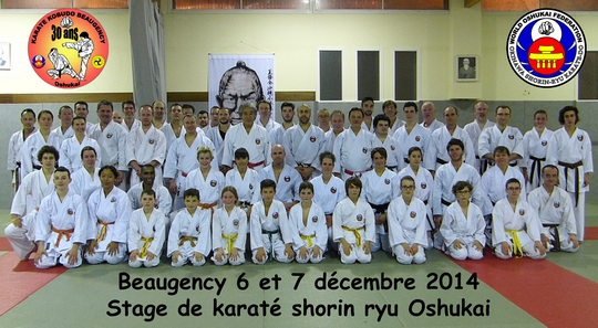 Stage Oshukai de Karate à Beaugency