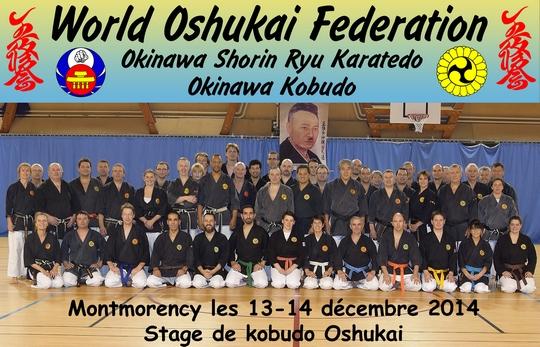 Stage Oshukai de Kobudo à Montmorency