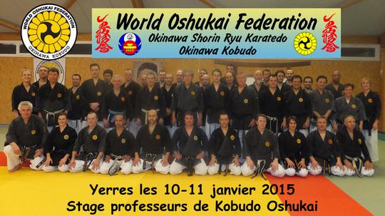 Stage de professeurs Oshukai de Kobudo d'Okinawa