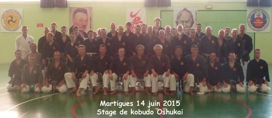 kobudo Martigues