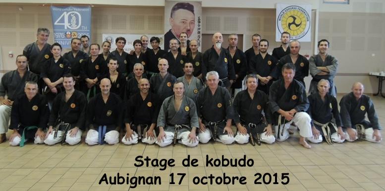 Stage Oshukai Kobudo d'Okinawa Aubignan