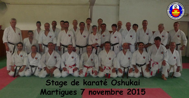 Stage Professeurs karaté Sud Martigues