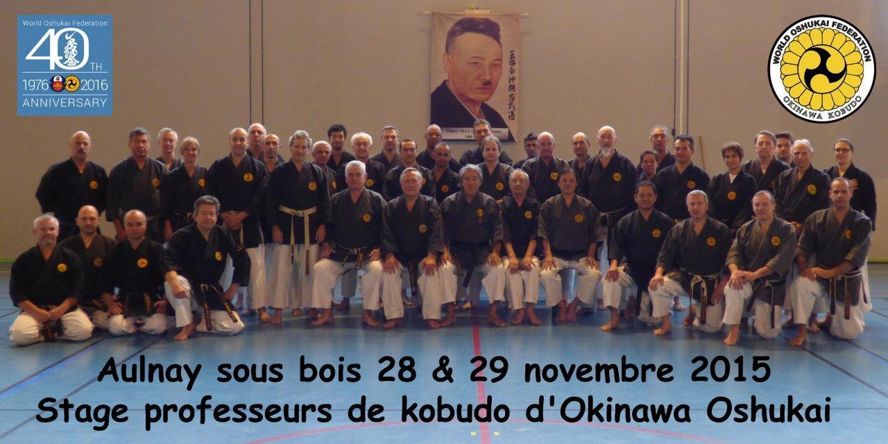 Stage de Professeurs de Kobudo Oshukai à Aulnay