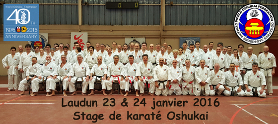 Stage de Karate Shorin Ryu à Laudun