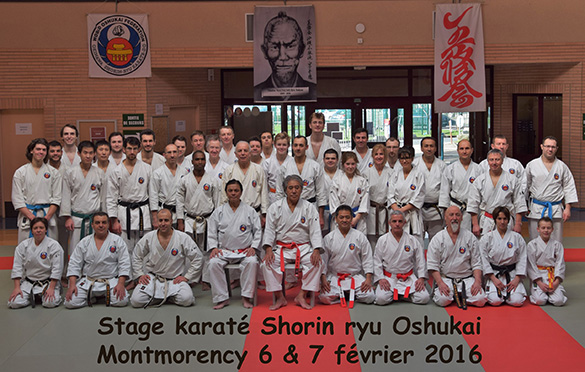 Stage de karate Shorin Ryu à Montmorency (95)