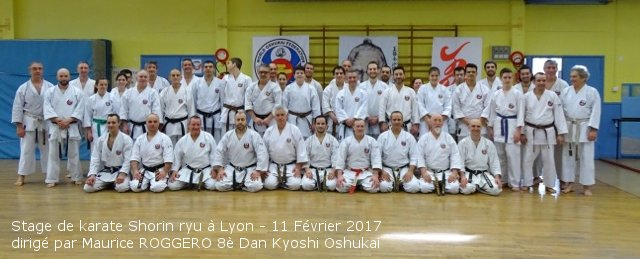 Stage de Karate Shorin Ryu à Lyon