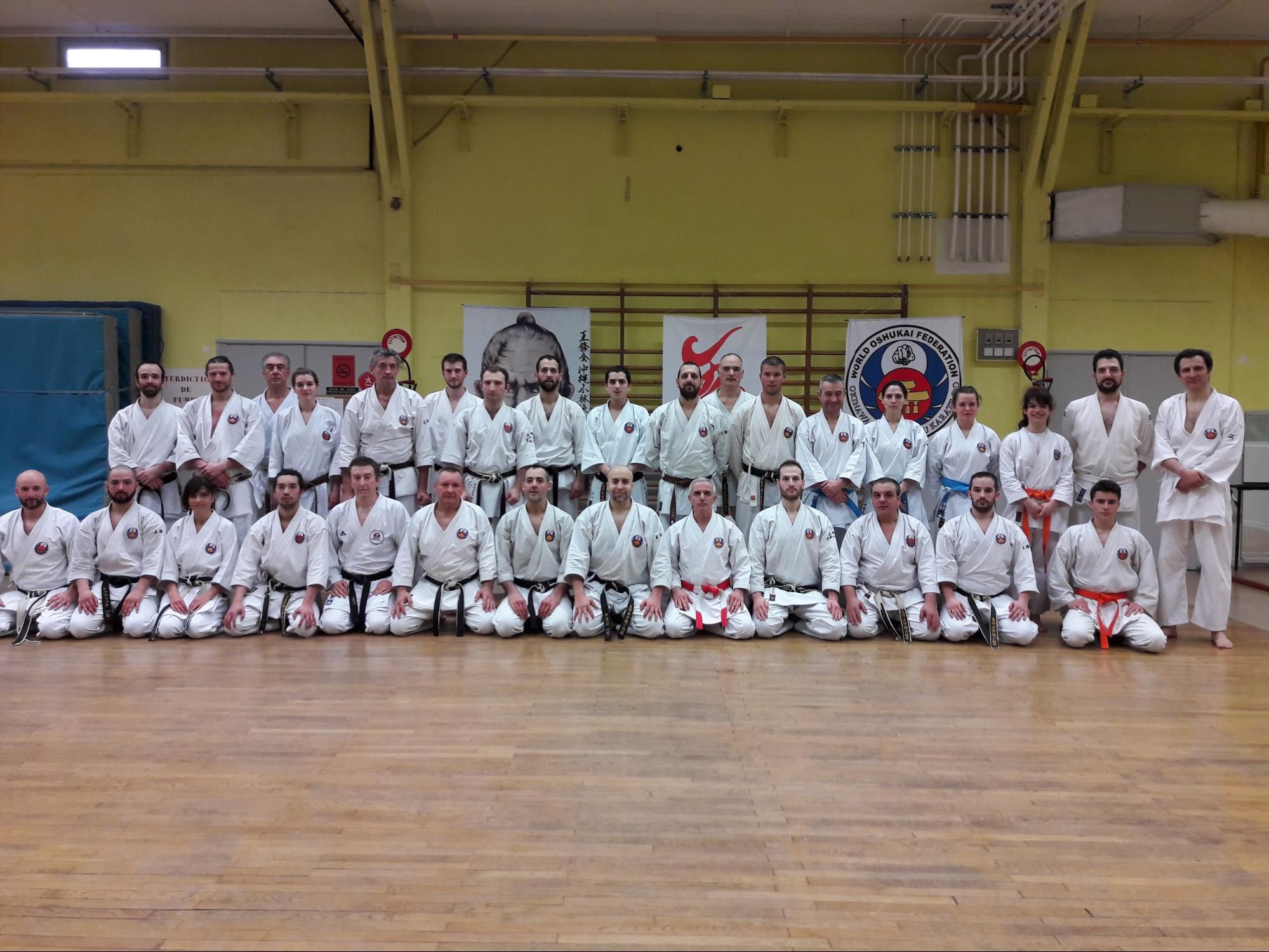 Stage Combat Dojo Kumite OSHUKAI – Lyon 17 Février