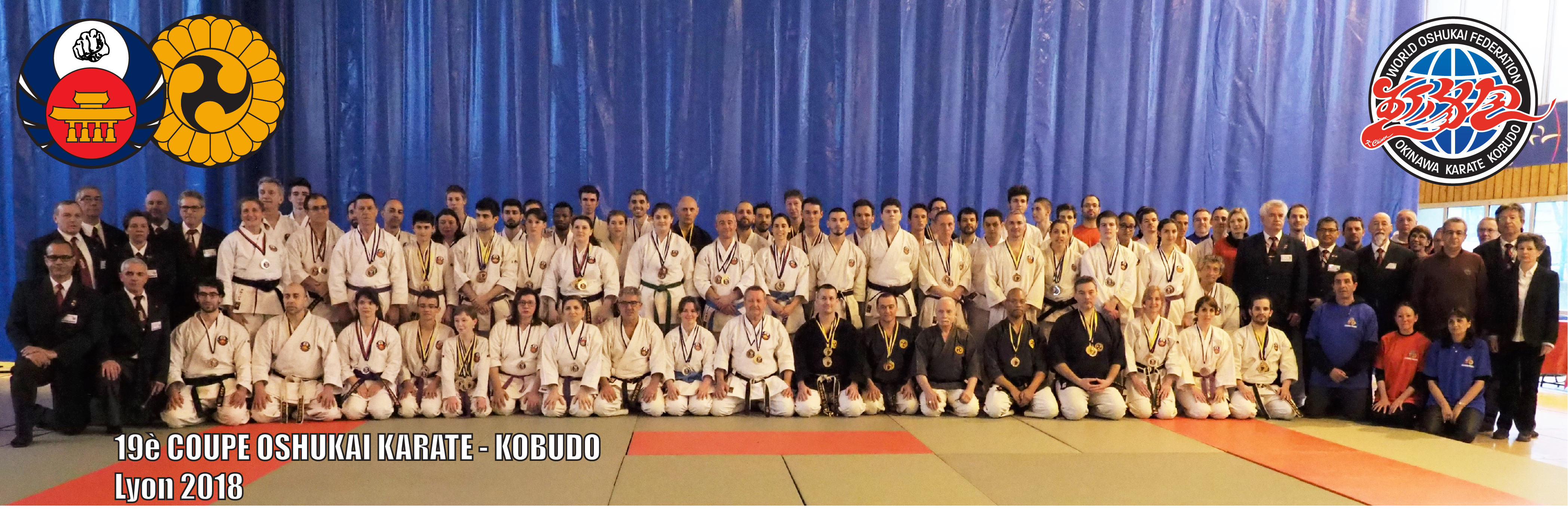 Coupe Oshukai France Karate Kobudo Lyon 2018