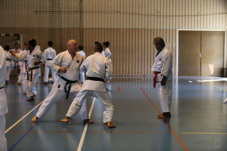 Séminaire d'été de Karate Shorin-ryu et de Kobudo d'Okinawa à Thonon-les-Bains
