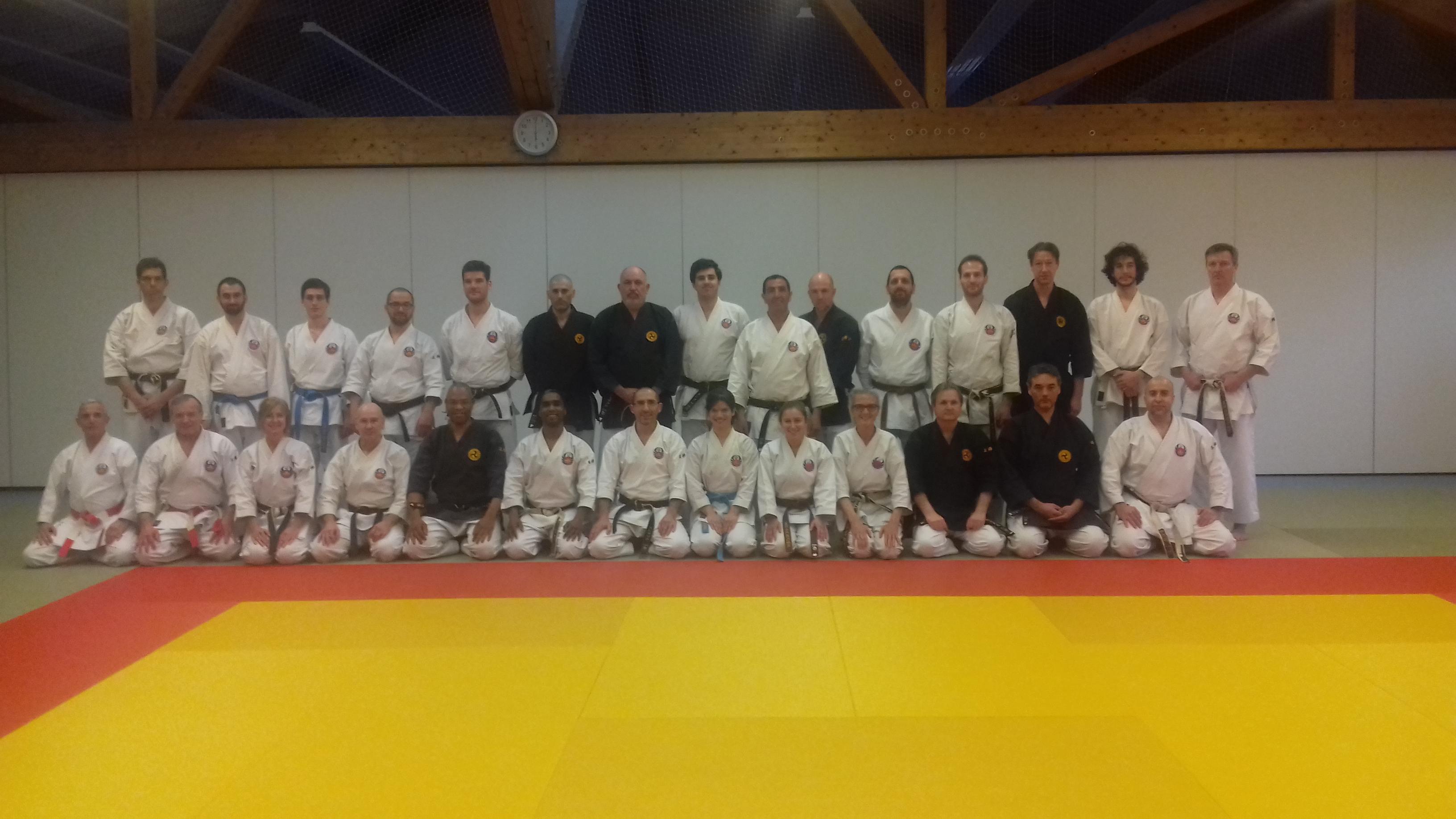 Formation BFA 1 Oshukai Karate Kobudo