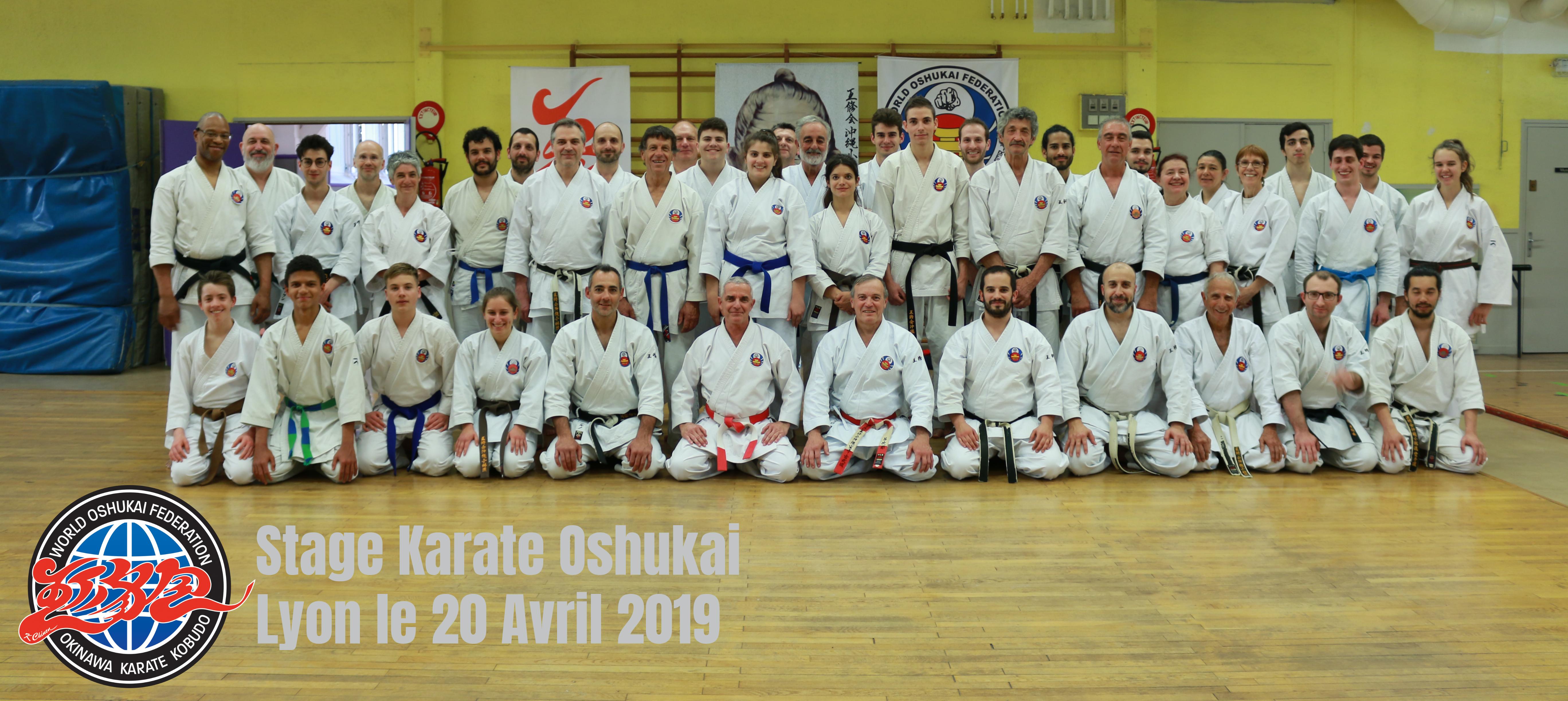 Stage Karate Oshukai Lyon