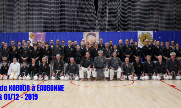 Stage National de Kobudo à Eaubonne (95)