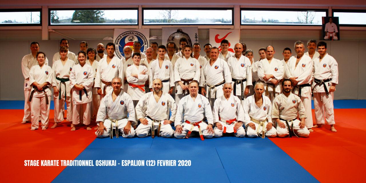 Stage de Karate traditionnel a espalion (12)