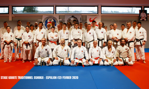 Stage de Karate traditionnel a espalion (12)